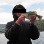 河口湖ブラックバス釣果