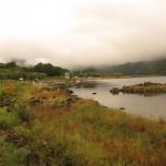河口湖 ワンド