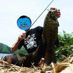 【2016】野尻湖おかっぱりバス!釣果&攻略法