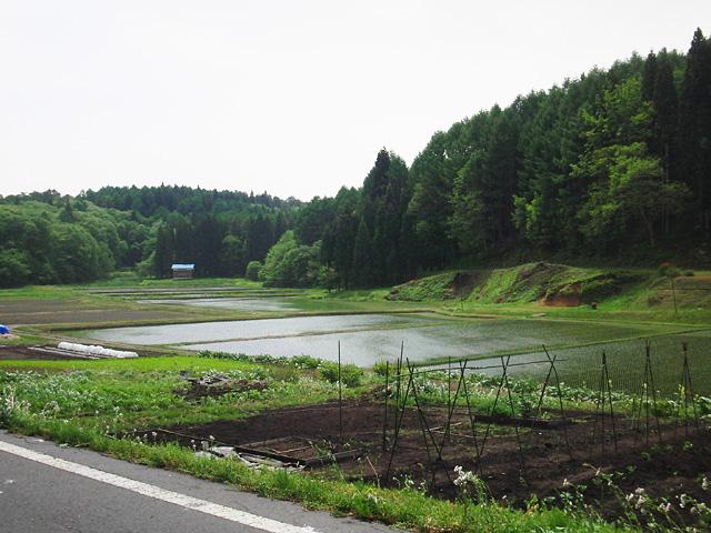 野尻湖 おかっぱり
