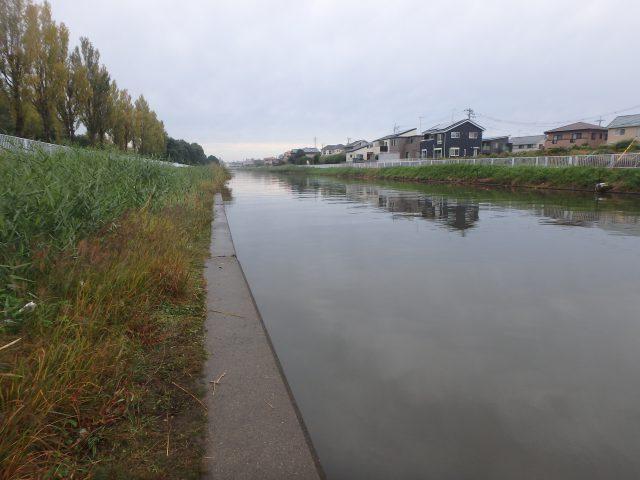 霞ヶ浦 備前川