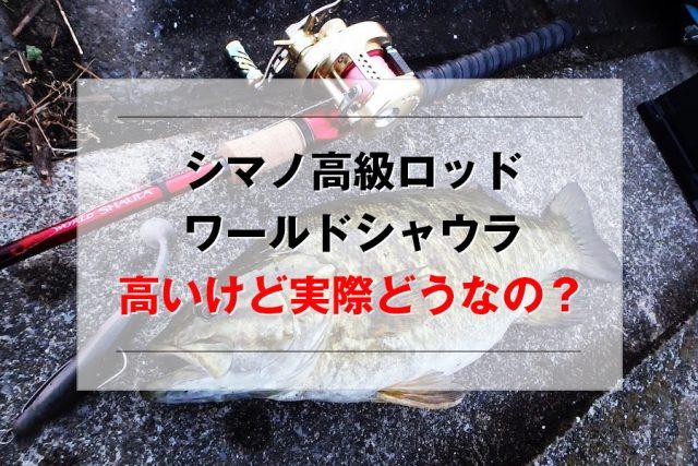 シマノ ワールドシャウラ インプレ